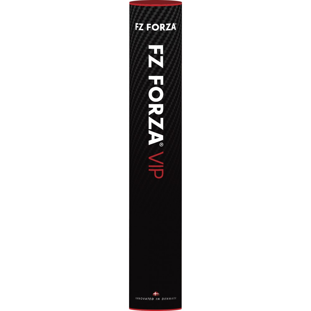 FZForzaVIP-31