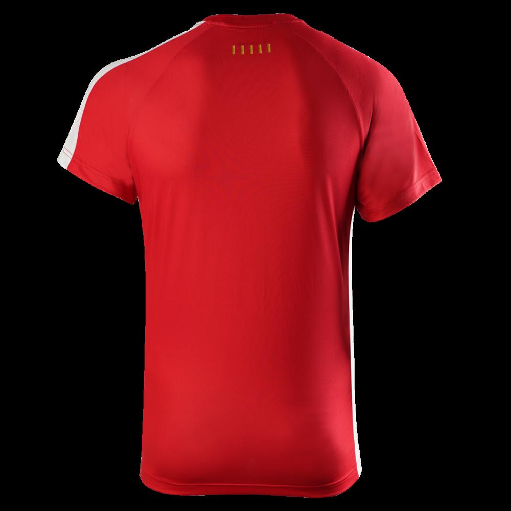 VictorDenmarkTeamMensTshirt2020-34