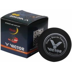 Victor squashbold-20